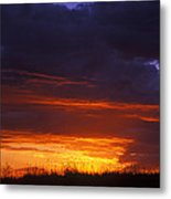 Canyonlands Grasses Silhouetted Metal Print