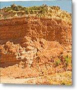 Canyonlands In West Texas Metal Print