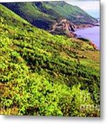 Cape Breton Highlands National Park Metal Print