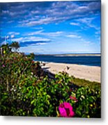 Cape Cod Beach Metal Print