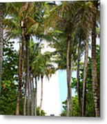 Cape Florida Walkway Metal Print