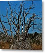 Cape Hatteras Lighthouse Through The Trees 3/01 Metal Print