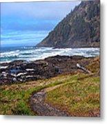 Cape Perpetua Path Metal Print