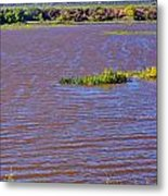 Caprock Canyon-lake Scenic Metal Print