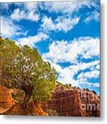 Caprock Canyon Tree Metal Print