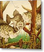 Captivating Crappies Metal Print by Bruce Bley