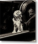 Car And Dog Metal Print