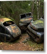 Car Cemetery In The Woods. Metal Print