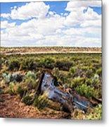 Car Door In The Desert Metal Print