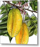Carambolas Starfruit Two Up Metal Print