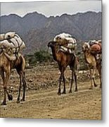 Caravan In The Desert Metal Print by Liudmila Di