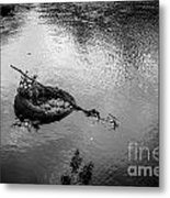 Carcass In The River Metal Print
