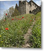 Carcassonne Poppies Metal Print by Robert Lacy