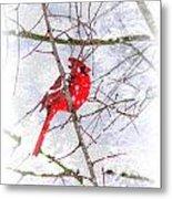 Cardinal Christmas-2014 Metal Print