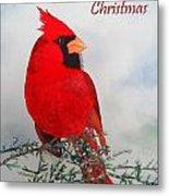 Cardinal Merry Christmas Metal Print