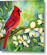 Cardinal On Dogwood Metal Print