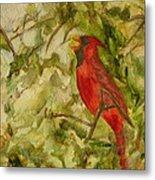 Cardinal Singing Metal Print
