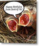 Cardinals Birthday Card Metal Print