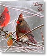 Cardinals - Male And Female - Img_003card Metal Print