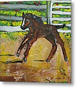 Carefree Pony Metal Print