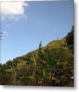 Caribbean Cruise - Dominica - 1212115 Metal Print