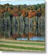 Caribou Lake Reflected Metal Print
