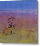 Caribou On The Tundra Metal Print