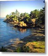 Carmel Meadows Beach At Point Lobos Metal Print