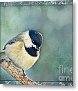 Carolina Chickadee With Decorative Frame I Metal Print