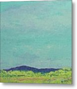 Carolina Spring Day Metal Print