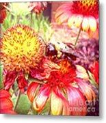 Carpenter Bee No. 4 Metal Print