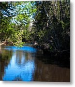 Carpenters Park 5 Metal Print