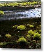 Carretera Austral River Metal Print by Arie Arik Chen
