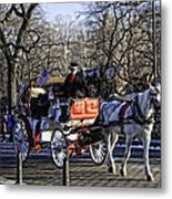 Carriage Driver - Central Park - Nyc Metal Print