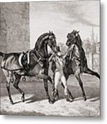 Carriage Horses For The King Metal Print