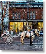 Carriage Ride Metal Print by Baywest Imaging