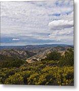 Carrizo Canyon Metal Print