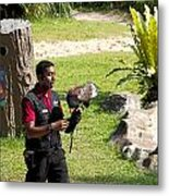 Cartoon - A Trainer And A Large Bird Of Prey At A Show Inside The Jurong Bird Park Metal Print