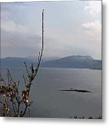 Cartoon - Plants In Front Of The Waters Of A Lake In The Scottish Highlands Metal Print