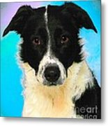 Cartoon Collection No 3 Life With A Border Collie In Usa Metal Print