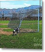 Cartoon Collection No 4 Life With A Border Collie In Usa Metal Print