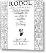 Cartouche, 1529 Metal Print