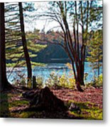 Cary Lake In The Fall Metal Print