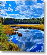 Cary Lake Near Old Forge New York Metal Print by David Patterson
