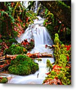 Cascade Creek Metal Print by Randy Giesbrecht