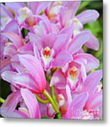 Cascade Of Pink Orchids Metal Print
