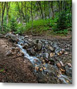 Cascades Of The Forest Metal Print