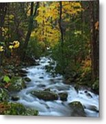 Cascades On The Motor Nature Trail Metal Print
