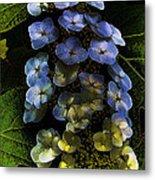 Cascading Flower Metal Print