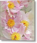 Cascading Pink Peony Flowers Metal Print